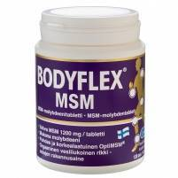 Bodyflex MSM 120 tablets