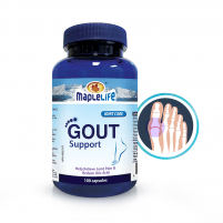 Gout Support - 100 Caps