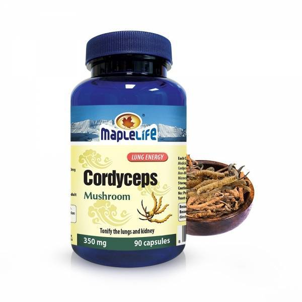 Cordyceps Mushroom 90 caps